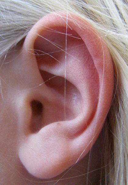 psychoacoustic tricks : your ears are fooling you, or maybe it is your brain...